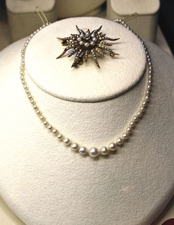 broach: Necklace and broach adorn a simulated person in a jewelry store
