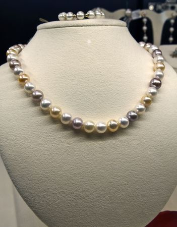 Pearl on display at a jewelry store photo
