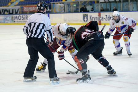 Krynica-Zdroj, Poland - February 25, 2017: Hockey game Polonia Bytom vs Tyskie Lions during the XXIII National Junior Olympics Winter Games