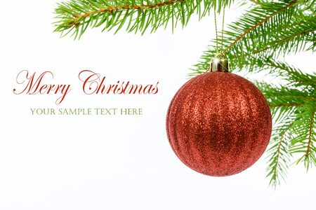 Glänzender roter Weihnachtsball, der von einer Niederlassung eines Weihnachtsbaums lokalisiert auf einem weißen Hintergrund mit Kopienraumplatz hängt (Beispieltext). Standard-Bild