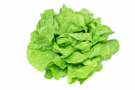 Top view of a fresh and ideal green lettuce with water drops on a white background (high details).