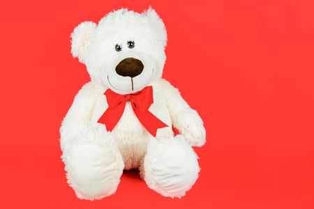Greetings card concept - white teddy bear with a bow isolated on a red background (copy space)