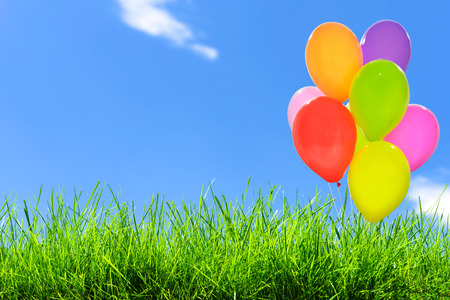 Outdoor party decoration concept - mix of colorful balloons on a green grass field and blue sky background with copy space (mixed). Stock Photo