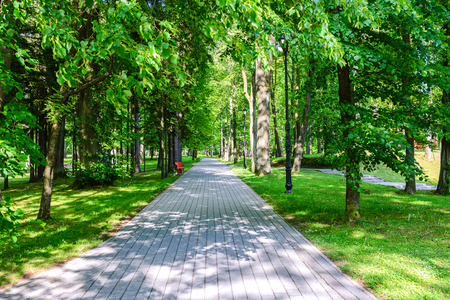 Stone pathway between green trees in a beautiful city park in a sunny summer day Stock Photo
