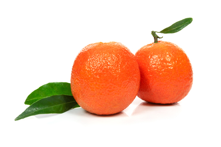 Two perfect orange or tangerine fresh fruitd with leaves on a white background in close-up