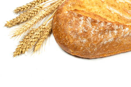Fresh loaf of bread with wheat grains on a white background in close up.