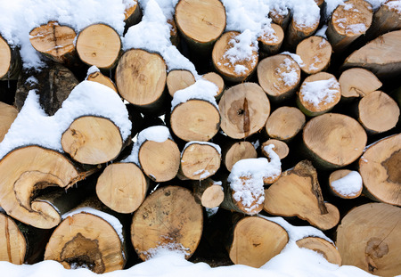 Firewood stacked in piles and covered with snow in the forest in close-up