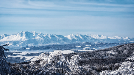 Picturesque panorama of the High Tatra Mountains in Slovakia. View from the top of the Jaworzyna Krynicka Mountain in Poland.