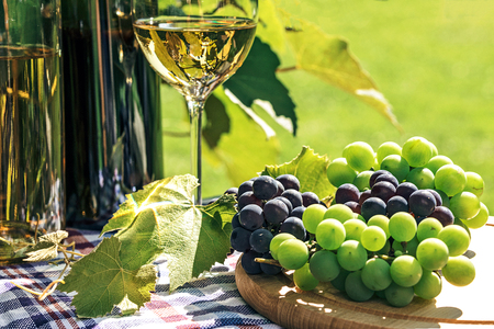 Bunch of fresh grapes next to wine in a bottle and wineglass  on the background of a rustic vineyard and sunlight.