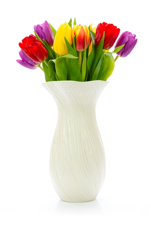 Fresh multi colored tulips flowers in a vase isolated on a white background Stock Photo