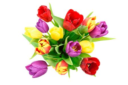 Top view of fresh multi colored tulips flowers bouquet isolated on a white background in close-up