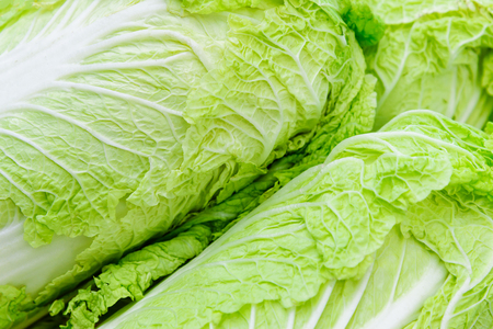 Full frame background of fresh chinese cabbages for sale on a green market. Stock Photo
