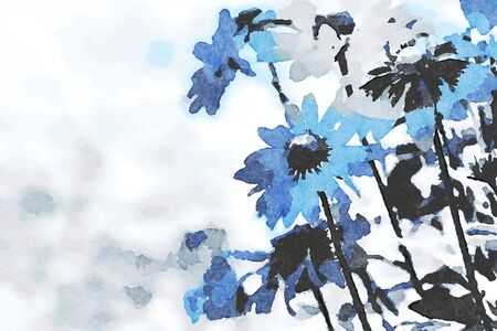 Digital art painting canvas - blue toned rudbeckia flowers blooming in the garden (watercolor effect). 스톡 콘텐츠