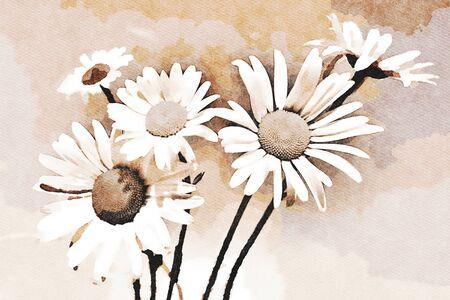 Lienzo de pintura de arte digital - imagen en tonos marrones de margaritas en flor (efecto acuarela)