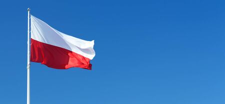 National flag of Poland waving on a clear blue sky background with copy space for text or ads 스톡 콘텐츠