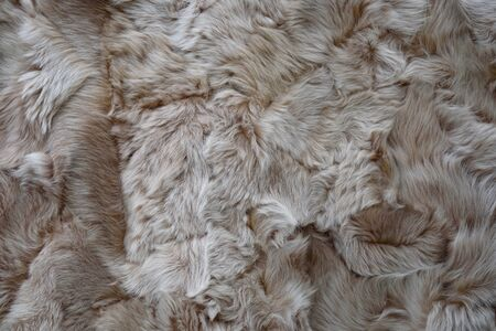 Abstract backgrounds of an Animal fur gray and brown with a long pile (high details) Imagens