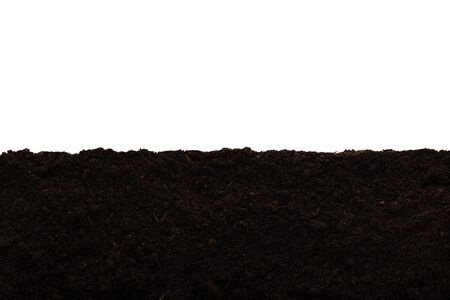 Layer of garden soil isolated against a white background