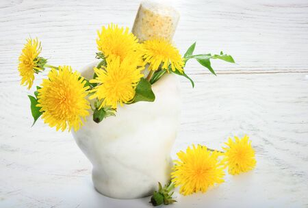 Concept of natural medicine - fresh yellow Dandelions in the marble mortar on a white wooden table