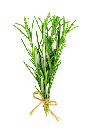 Studio shot of a fresh green rosemary bunch tied by a burlap string and isolated on a white background in close-up