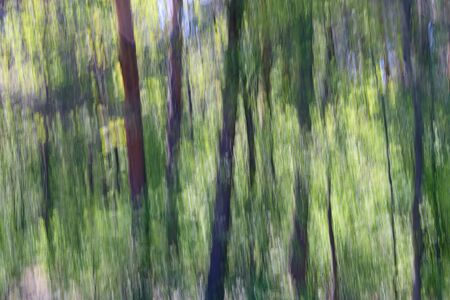 Artwork for wall decoration - abstract background of a spring forest produced by camera motion blur and long time exposure.