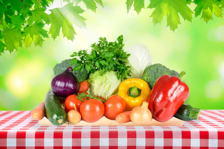 Healthy eating concept - outdoor picnic with fresh assorted vegetables on a table with classic Italian red checkered tablecloth.
