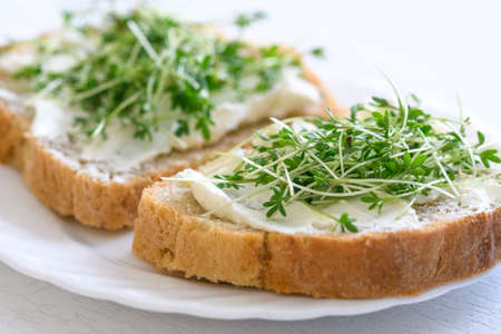 The idea for the simple and healthy breakfast - sandwiches with fresh home wholemeal bread with cottage cheese and Cress in close-up