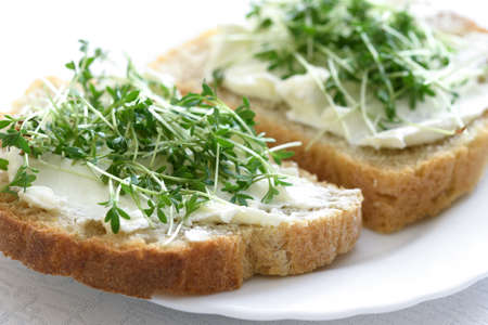 The idea for the simple and healthy breakfast - sandwiches with fresh home wholemeal bread with cottage cheese and Cress in close-up Stock fotó - 167342900