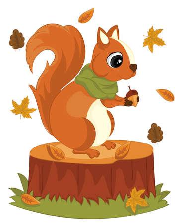 cute squirrel with acorns stump foliage hello autumn vector illustration. squirrel cartoon autumn greeting card. Ilustração