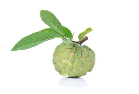 sweetsop: Annona sweetsop on white background.