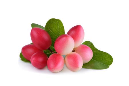 crimson colour: Karonda or Carunda Fruits, Tropical Fruits from Southeast Asia isolate on white. Stock Photo