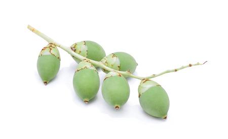 areca: Areca nut on white background Stock Photo