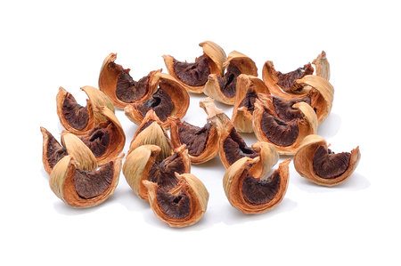 Dried Betel nut on a white background