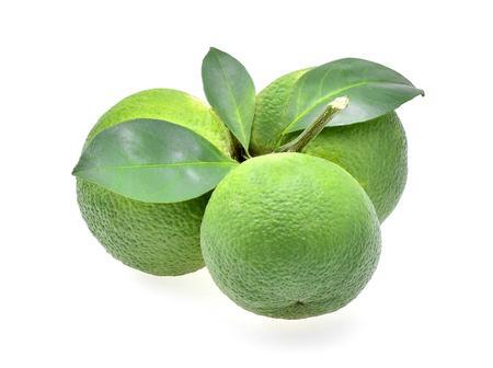 citrus aurantium: sweet orange(Citrus medica Linn) on white background Stock Photo