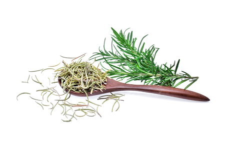 Rosemary fresh and dried on white background
