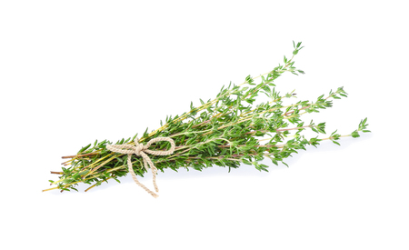 Thyme isolated on white background