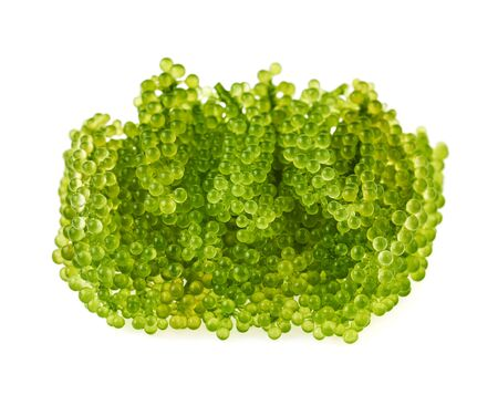 Umi-budou, grapes seaweed or green caviar isolated on white background Zdjęcie Seryjne