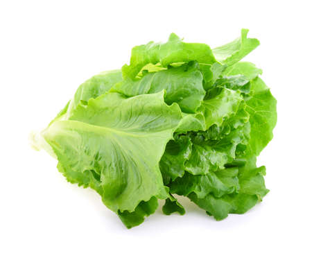 Butter head Lettuce isolated on white background