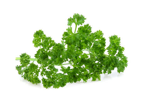 parsley isolated on white background Standard-Bild