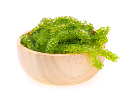 Umi-budou, grapes seaweed or green caviar isolated on white background Standard-Bild