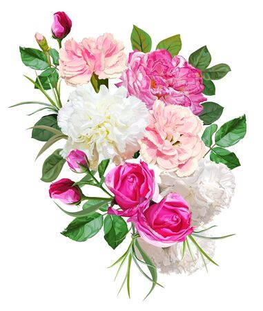 Rose and carnation bouquet flower isolated on white background vector illustration Vektorové ilustrace