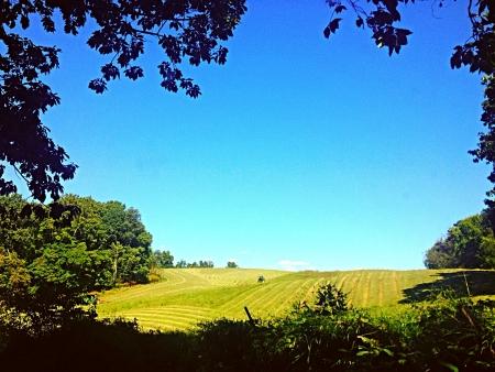 hay field: Un campo di fieno East Tennessee