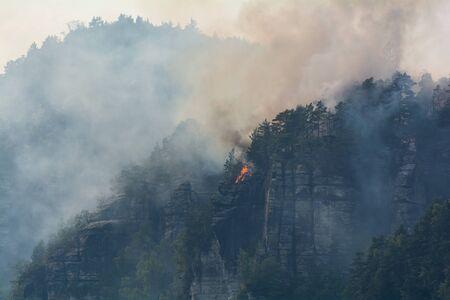 Forest fire Elbe Sandstone Mountains Standard-Bild