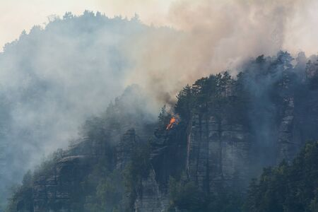 Forest fire Elbe Sandstone Mountains Stock Photo