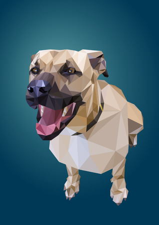 directly above: Low Poly dog Illustration