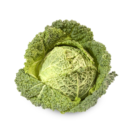 growers: Savoy cabbage isolated on white background