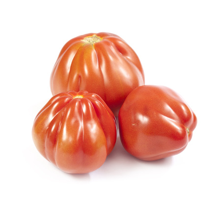 growers: Oxheart tomatoes isolated on white background Stock Photo