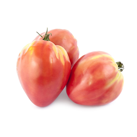 growers: Oxheart tomatoes isolated on white background. Local product of Catalonia (Spain)