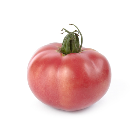 Pink tomato isolated on white background. Local product of Catalonia (Spain) called Rosa ple