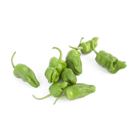 nearness: Padron peppers isolated on white background (typical green Galician peppers)