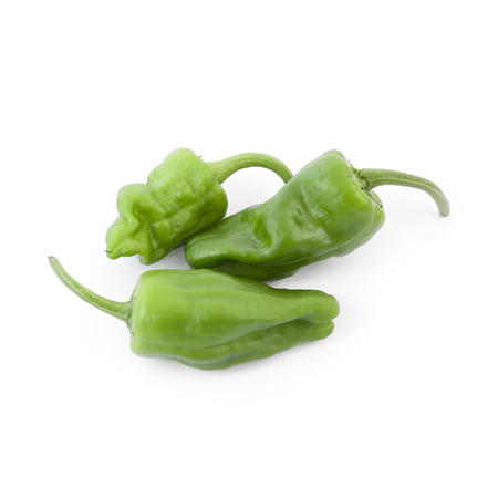 Padron peppers isolated on white background (typical green Galician peppers)